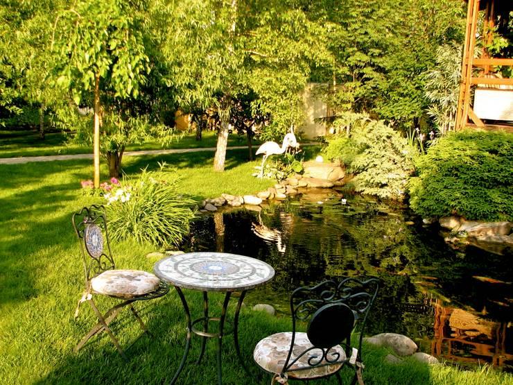 Приковать внимание: Сады в . Автор – Укр Ландшафт Парк