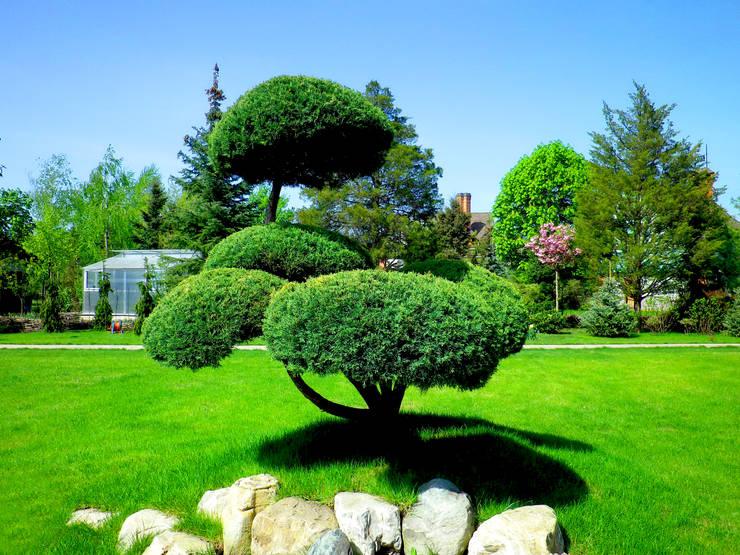 Место для раздумий: Сады в . Автор – Укр Ландшафт Парк