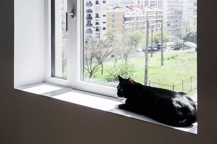 Apartamento Odivelas: Janelas   por Miguel Marcelino, Arq. Lda.