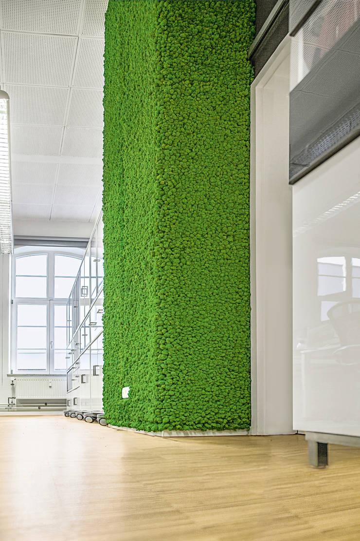 nachher: wandvorsprung in altbau-büro-loft mit hohen decken, begrünt