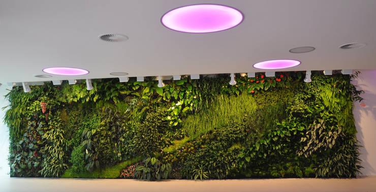 vertical garden:  Klinik by NISCALA GARDEN | Tukang Taman Surabaya