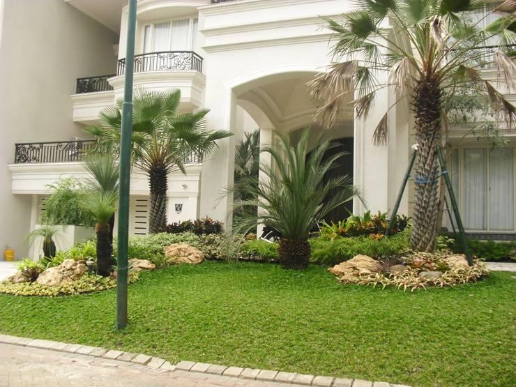 Jardines de estilo  por NISCALA GARDEN | Tukang Taman Surabaya