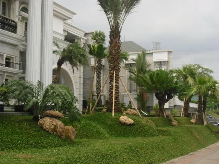 TAMAN MEDITERNIA:  Taman by NISCALA GARDEN   Tukang Taman Surabaya