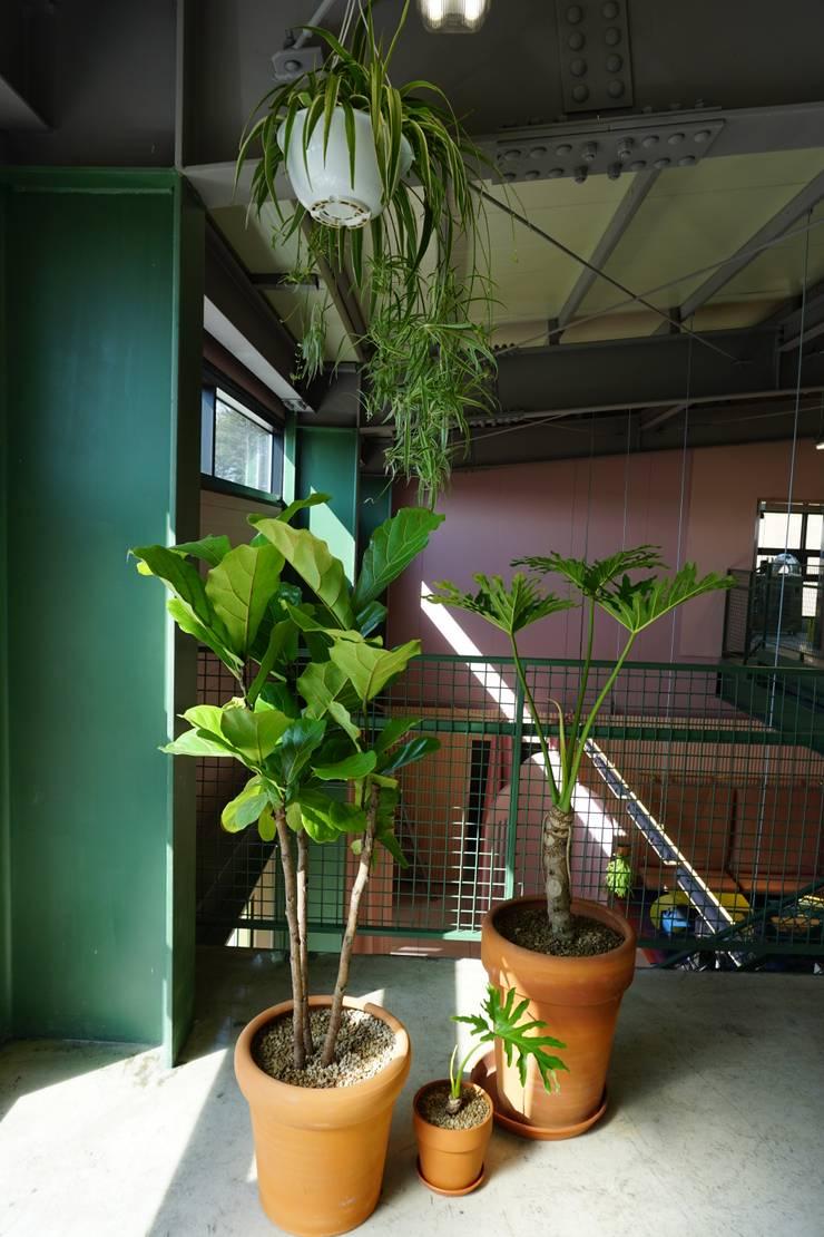PLANTERIOR - CAFE 2: 보테니크의  상업 공간