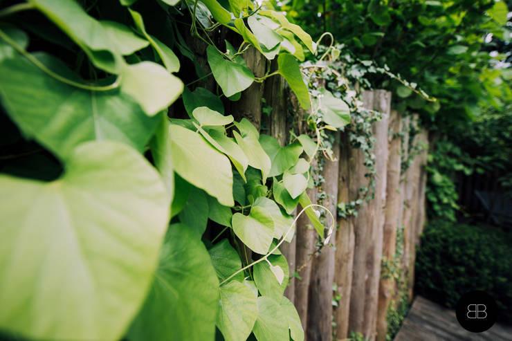 Mooie voorbeelden van een natuurlijke tuinafscheiding