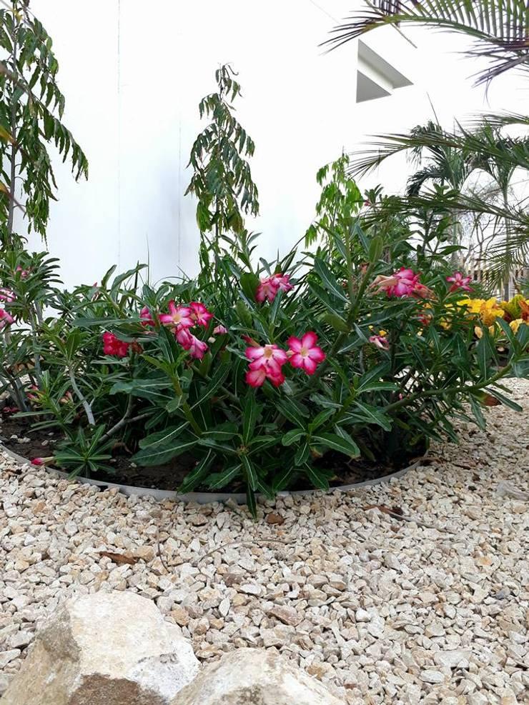 Jardines Hotel Melia / Cartagena: Jardines de estilo  por ecoexteriores