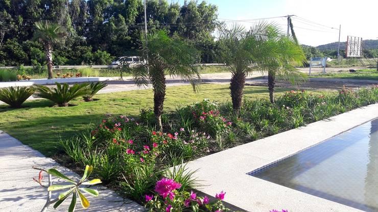 Jardins tropicais por ecoexteriores