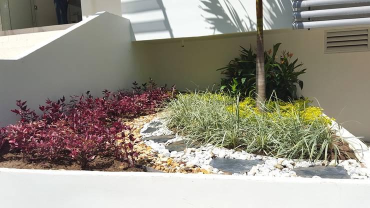 Jardines laboratorio Metropolitano – Barranquilla: Jardines de estilo  por ecoexteriores