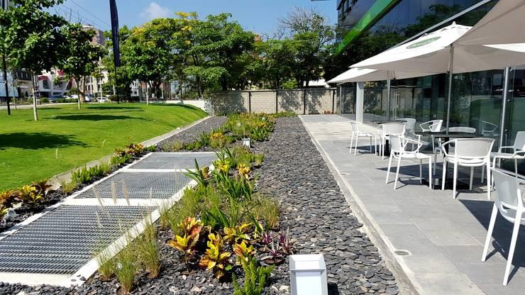 Jardines Hotel Movich – Barranquilla: Jardines de estilo  por ecoexteriores