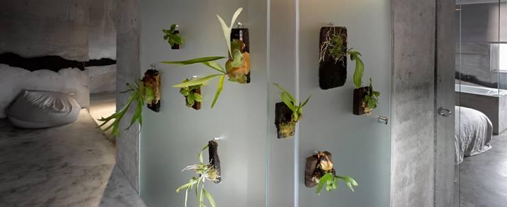 洗手間以霧面玻璃作為隔間,植栽清新而寡欲。:  浴室 by 本晴設計