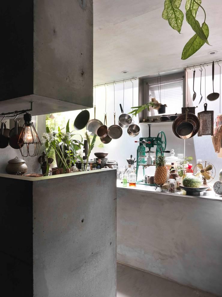 客廳與水泥的料理台轉而融為一個開放的花園廚房:  廚房 by 本晴設計