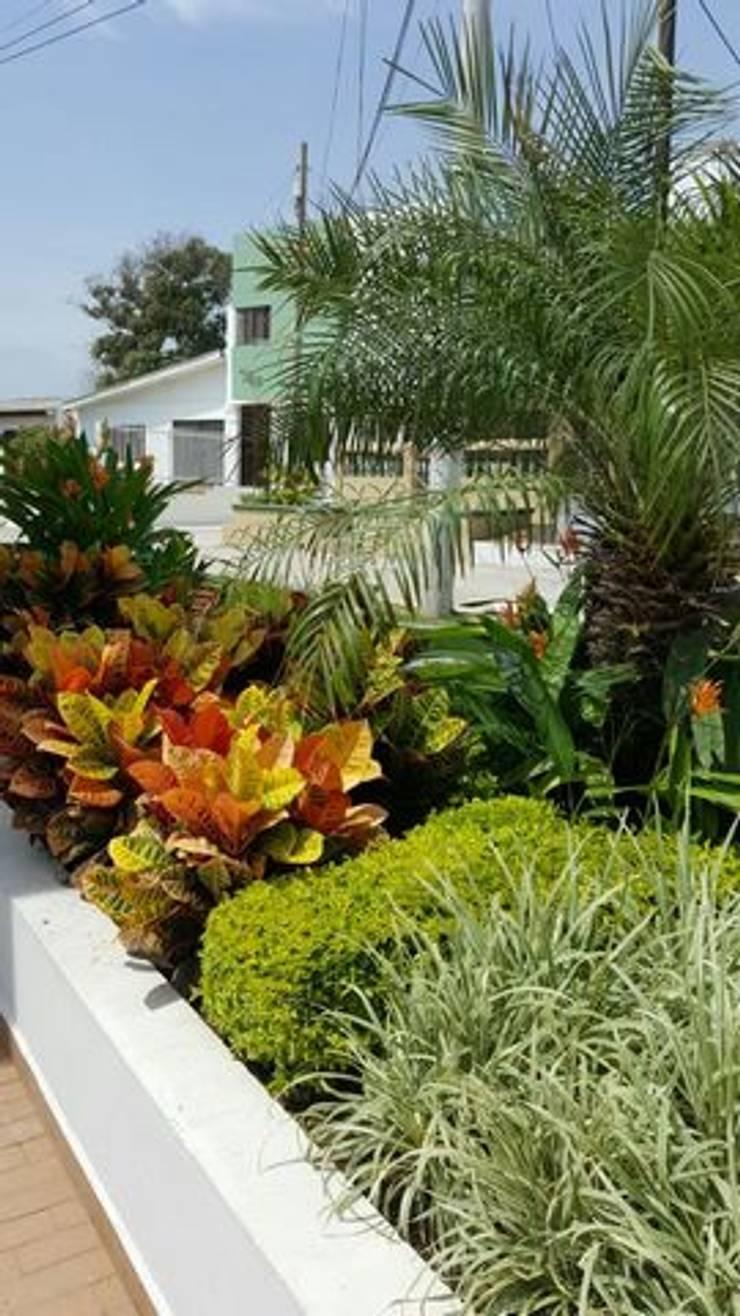 SALA DE VENTAS – MADEIRA APTOS. – BARRANQUILLA – COLOMBIA: Jardines de estilo  por BRASSICA SOLUCIONES PAISAJISTICAS S.A.S.