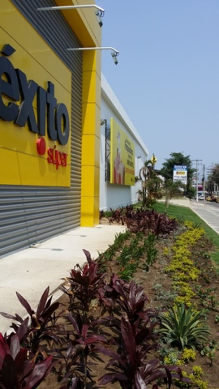 Jardines de estilo  de BRASSICA SOLUCIONES PAISAJISTICAS S.A.S., Tropical