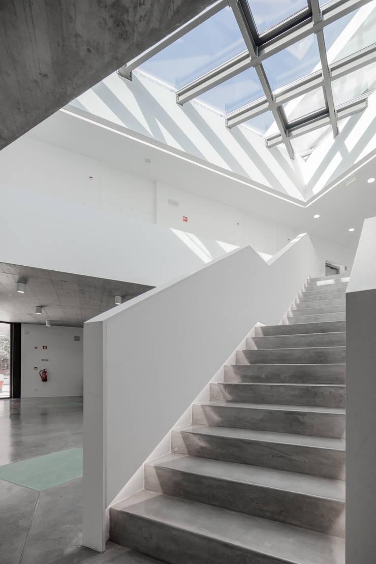 Corridor & hallway by Plano Humano Arquitectos, Minimalist Concrete