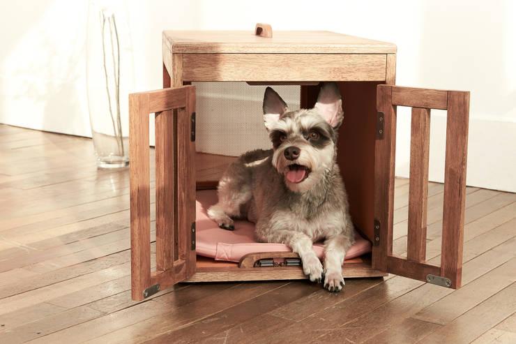 반려동물 가구 Pet Furniture - 마이켄넬하우스 MY KENNEL HOUSE: TWOINPLACE의  거실