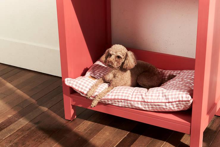 반려동물 가구 Pet Furniture  –  푸시아핑크 수납장 : TWOINPLACE의  거실
