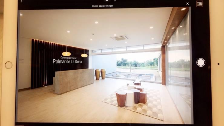 DISEÑO Y ADECUACIONES CENTRO DE INFORMACIÓN Y DOCUMENTACIÓN PALMAR DE LA SIERRA - FEDEPALMA CENIPALMA: Paisajismo de interiores de estilo  por Balance Arquitectura