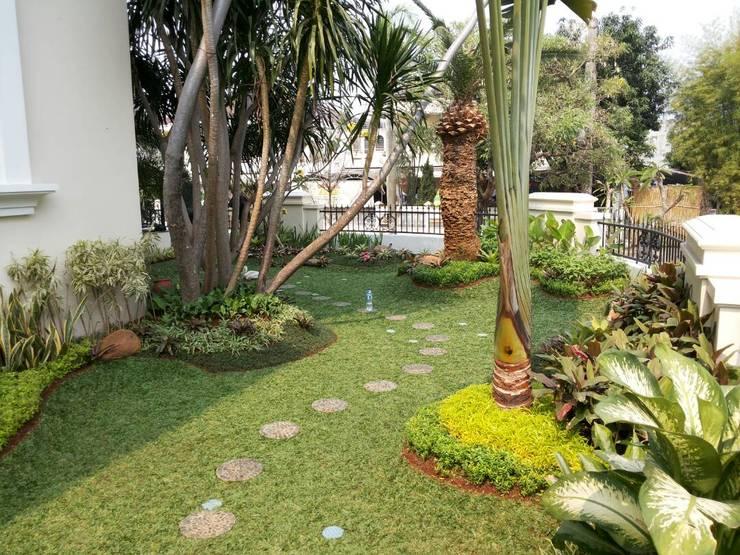 Tukang taman di jember:  Bar & Klub  by NISCALA GARDEN | Tukang Taman Surabaya