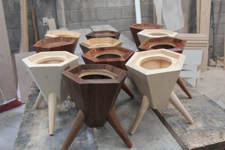 Nogal, Basswood, Tzalám: Paisajismo de interiores de estilo  por MSTYZO Diseño y fabricación de mobiliario