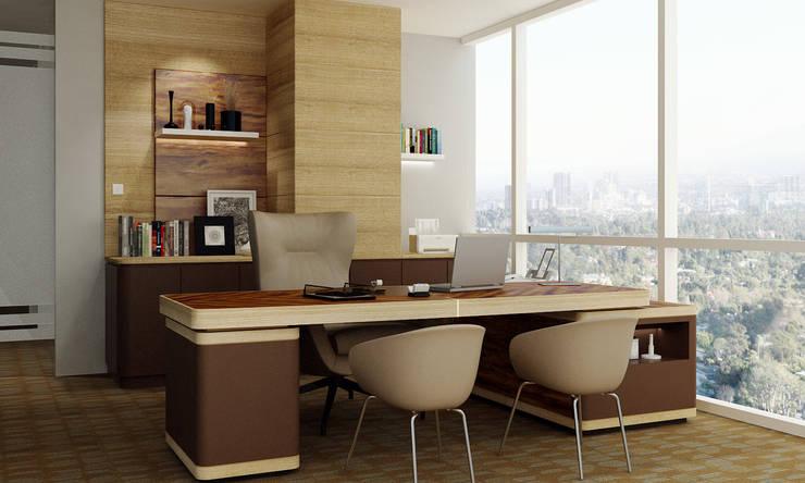 Director Office:  Kantor & toko by Juxta Interior