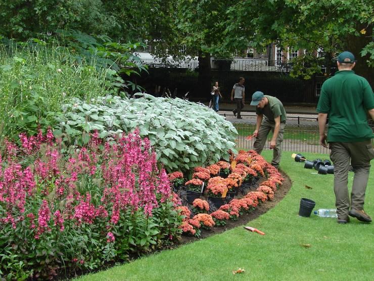 Jardines de estilo mediterráneo por Jardinería Agrotofran S.L.