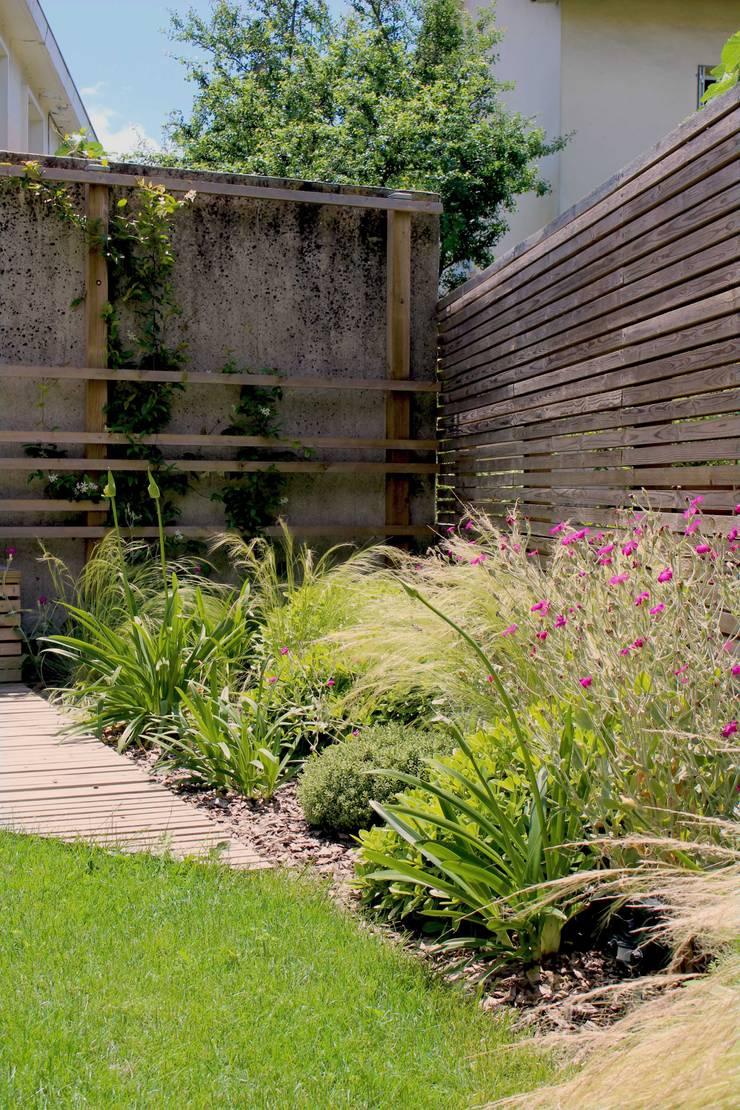 Fleurs et graminées Jardin moderne par Constans Paysage Moderne