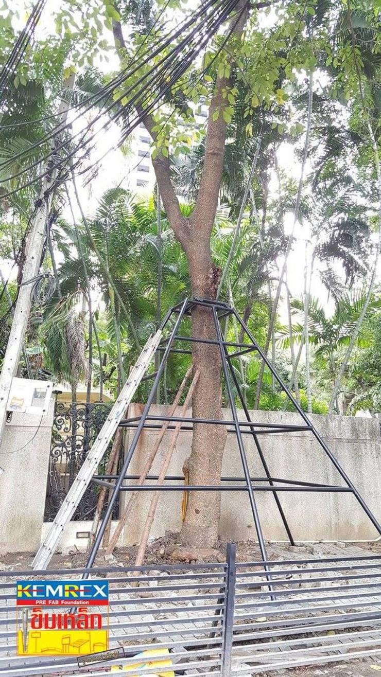 ฐานรากค้ำยันต้นไม้ คุณประจวบ:   by บริษัทเข็มเหล็ก จำกัด