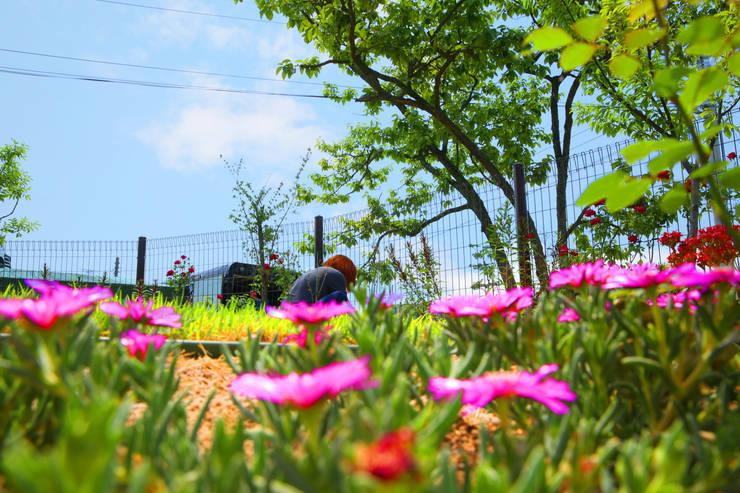 동화같은 마당을 품은 아기자기한 전원주택: 한글주택(주)의  정원