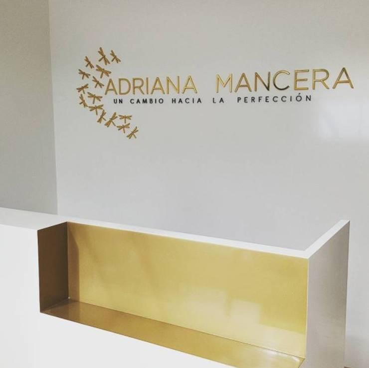Adriana Mancera de Phoenix Touch Moderno Metal