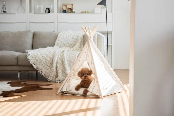 반려동물 가구 Pet Furniture - TEEPEE TENT : HUTS & BAY의  상업 공간,
