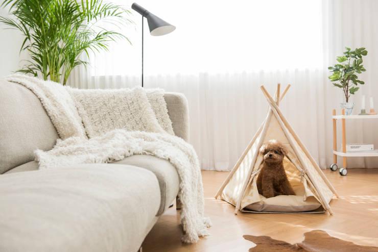 반려동물 가구 Pet Furniture – TEEPEE TENT : HUTS & BAY의  상업 공간,