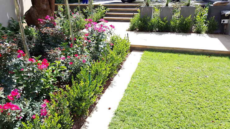 New driveways and garden for Wendal and Busi:  Garden by Gorgeous Gardens