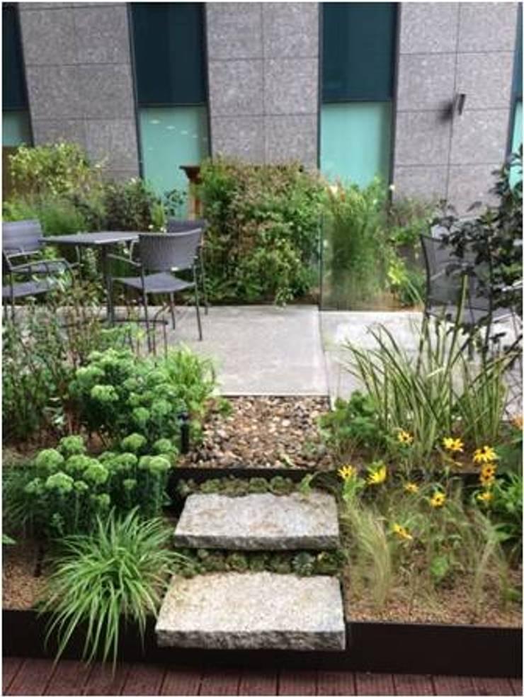 가드닝 프로젝트 – 2014. 아모레퍼시픽  본사옥상정원: 가든디자인 뜰(garden design 뜰)의  정원