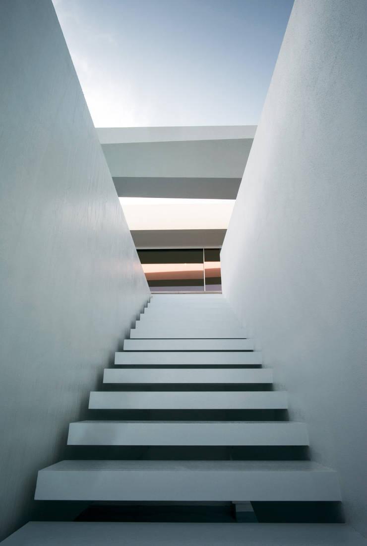 Arquitetura Casa Carrara Mario Martins Atelier: Casas  por Tendenza -  Interiors & Architecture Studio