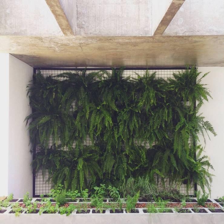 Jardines de estilo  por INTRIO
