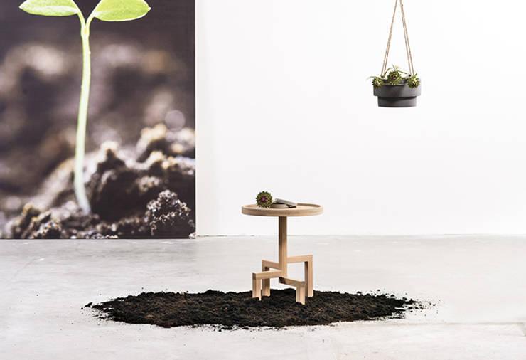 ROOTS:   door Studio Gerard de Hoop , Scandinavisch Hout Hout