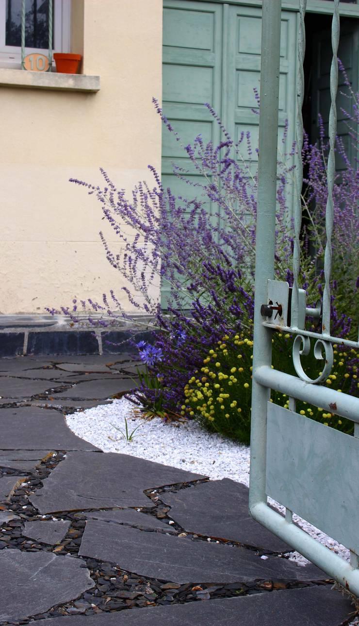 Entrée Jardin moderne par Constans Paysage Moderne