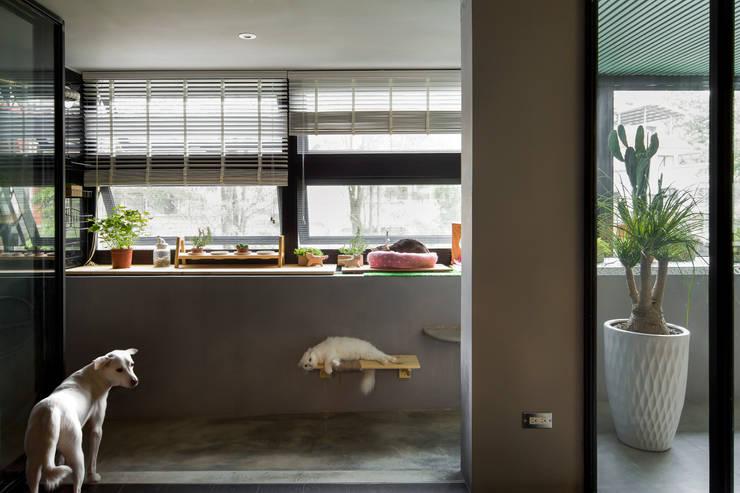 不只是寵物 毛小孩也是一家人:  庭院 by 磨設計