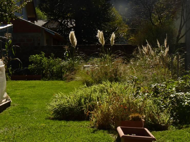 Vista del cantero silvestre: Jardines de estilo  por Pell Paisajismo