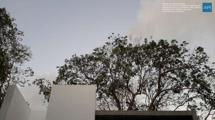 La Casa del Arbol / Playa del Carmen, Quintana Roo, México: Casas de estilo  por AR STUDIO