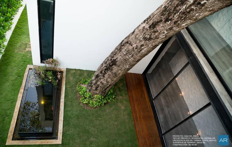 La Casa del Arbol / Playa del Carmen, Quintana Roo, México: Estanques de jardín de estilo  por AR STUDIO