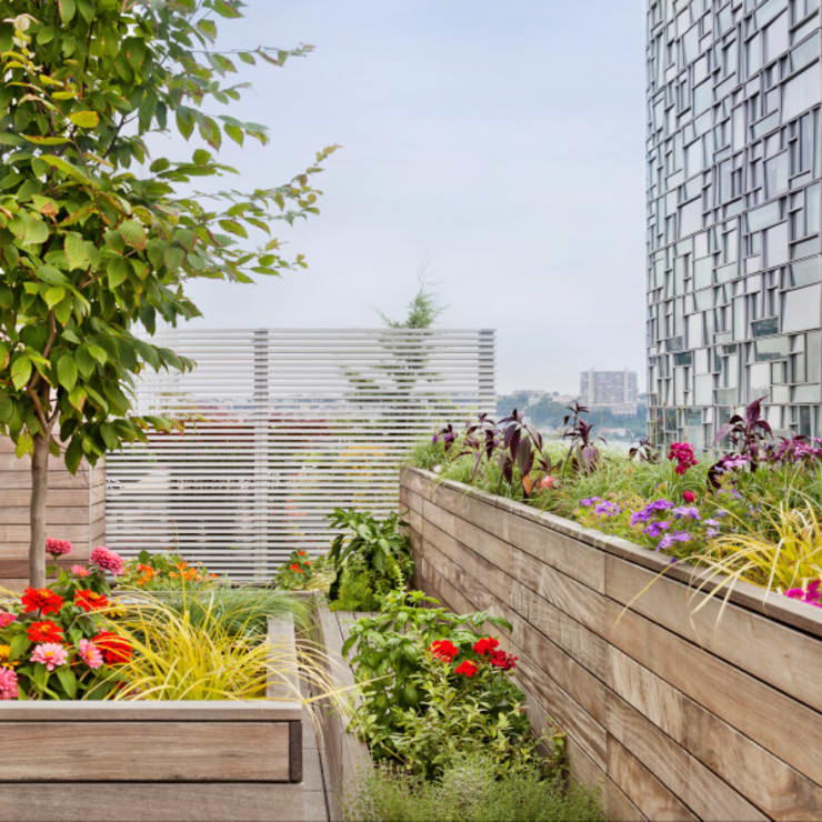 High Line Penthouse, New York, NY:  Patios & Decks by BILLINKOFF ARCHITECTURE PLLC