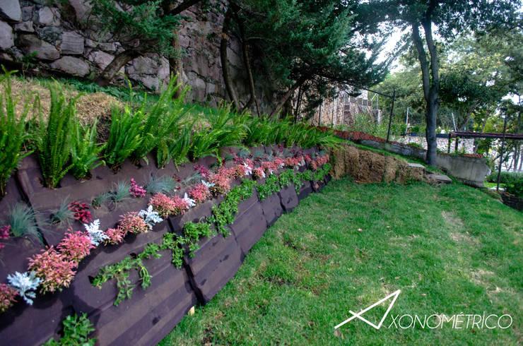 Сады в . Автор – Axonometrico