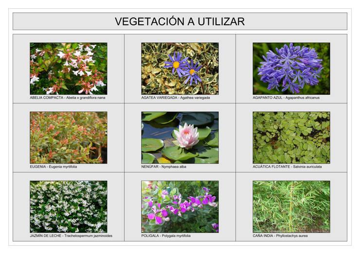 Jardín Las Enanas: Jardines de estilo  por Dhena CONSTRUCCION DE JARDINES,