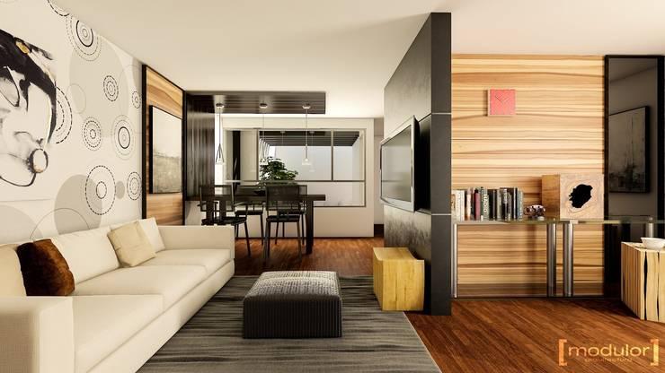Modern living room by Modulor Arquitectura Modern Concrete