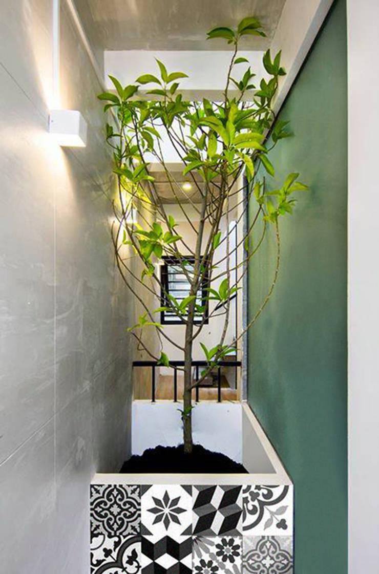 Q10 House:  Hiên, sân thượng by Studio8 Architecture & Urban Design