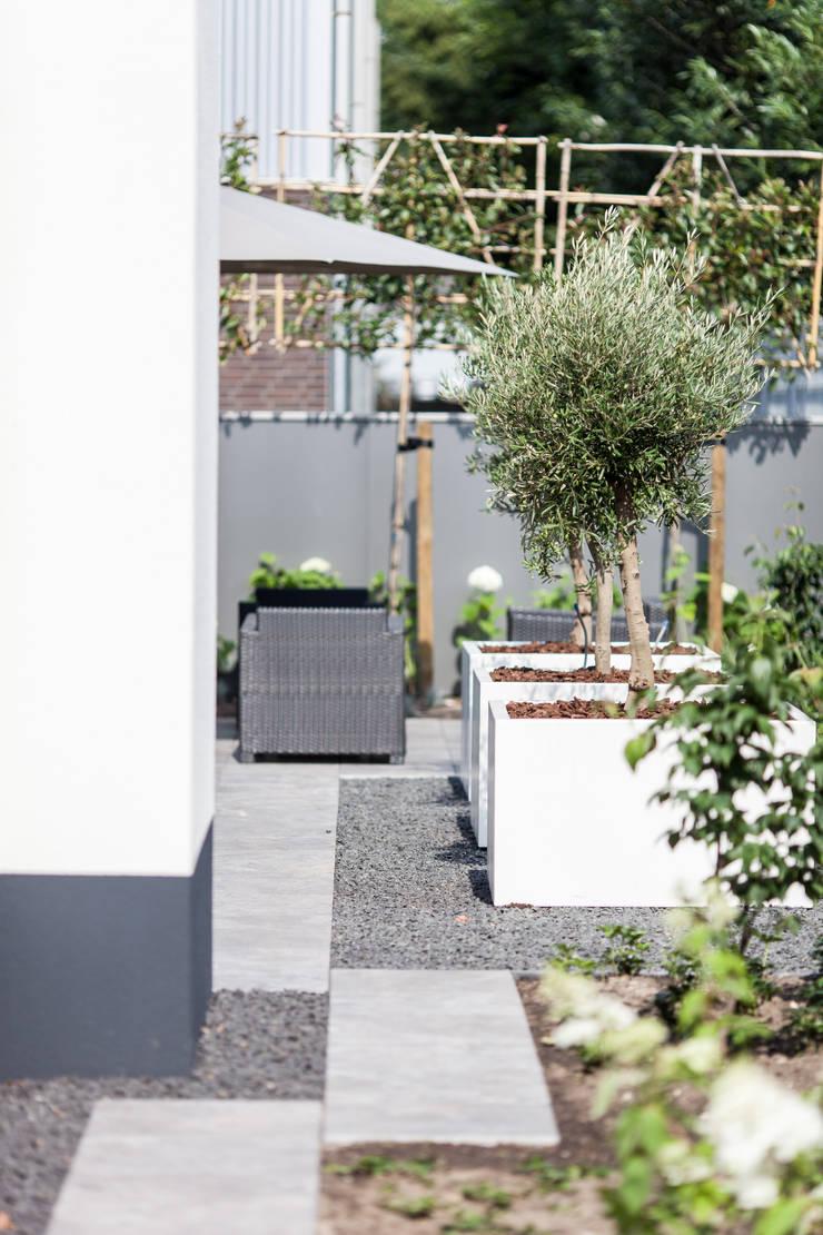 Азиатские сады в . Автор – Bob Romijnders Architectuur & Interieur, Модерн