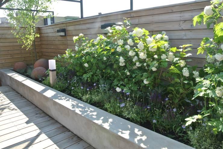 ROOF TOP GARDEN: 보테니크의  정원,북유럽