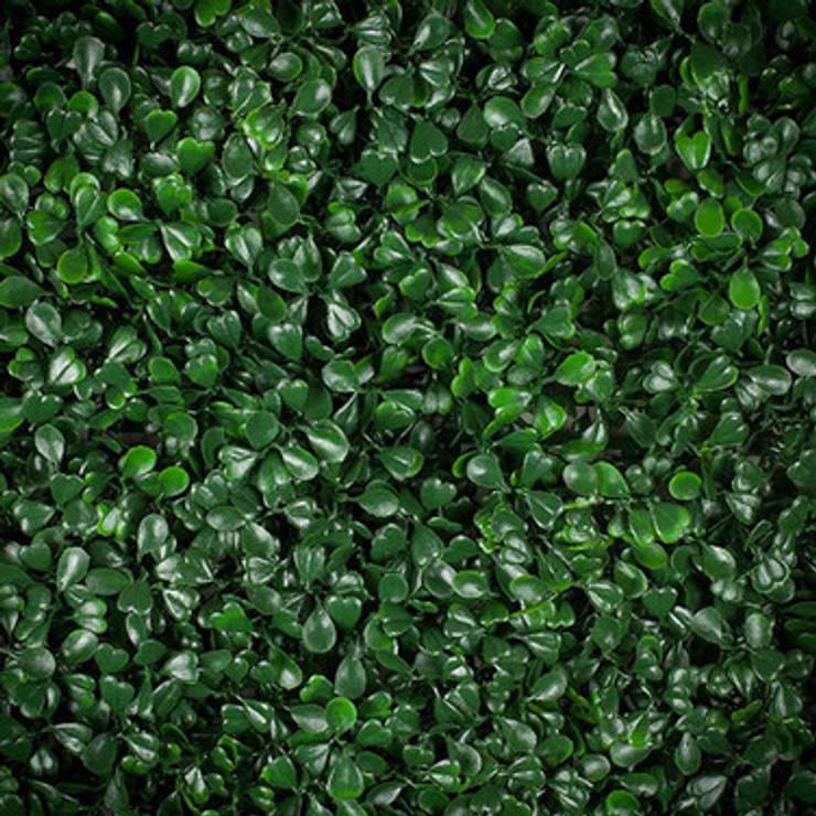 Trébol Verde: Paisajismo de interiores de estilo  por RIDÓ