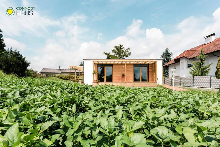 Casas unifamiliares de estilo  por COMMOD-Haus GmbH , Moderno